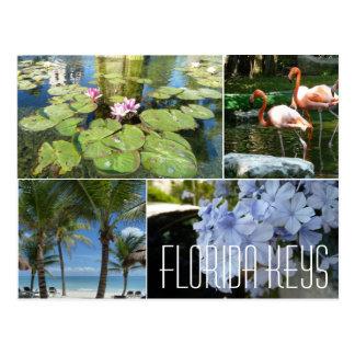 Florida befestigt Postkarte