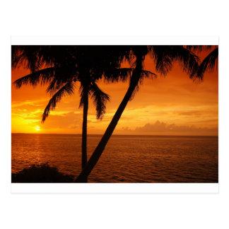Florida befestigt Sonnenuntergang Postkarte