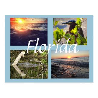 Florida-Fotografiepostkarte Postkarte