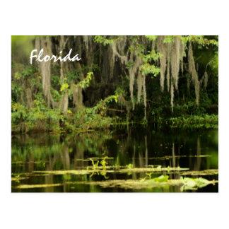 Florida Postkarte