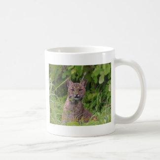 Florida-Rotluchs Kaffeetasse