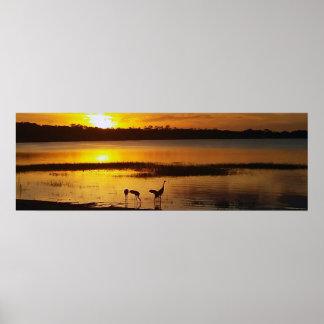 Florida See Dora Sonnenuntergang mit Poster