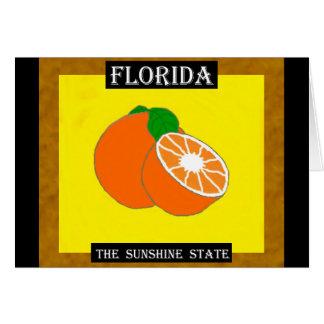 Florida-Sonnenschein State.jpg Karte