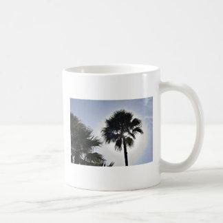 Florida-Sonnenschein Haferl