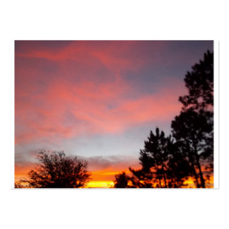 Florida-Sonnenuntergang Mini-Visitenkarten