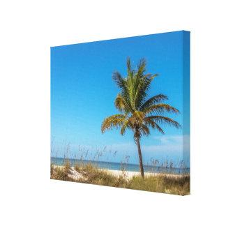 Florida-Strand palmtree Leinwand