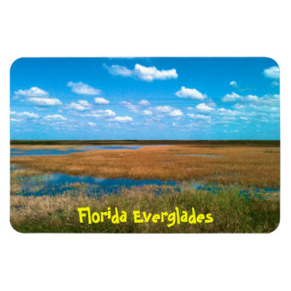 Florida-Sumpfgebiete Magnet