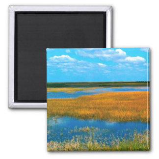 Florida-Sumpfgebiete - Magneten Quadratischer Magnet