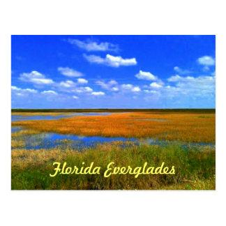 Florida-Sumpfgebiete Postkarte