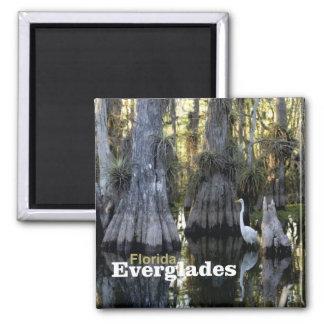 Floridaeverglades-Foto-Andenken-Kühlschrankmagnet Quadratischer Magnet