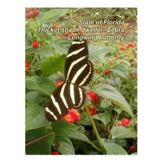 FloridaZebra Longwing Schmetterling Postkarte