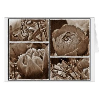 FlowerCollage Grußkarten