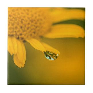 FlowerDroplet Fliese
