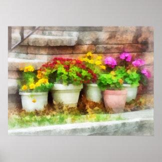 Flowerpots mit Herbst-Blumen Poster