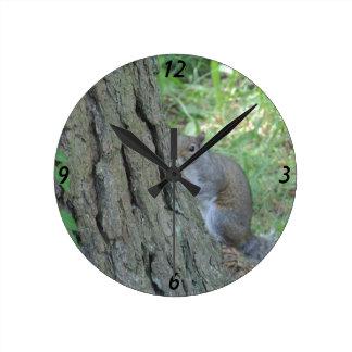 Flüchtiger Blick ein Boo-Eichhörnchen - Runde Wanduhr
