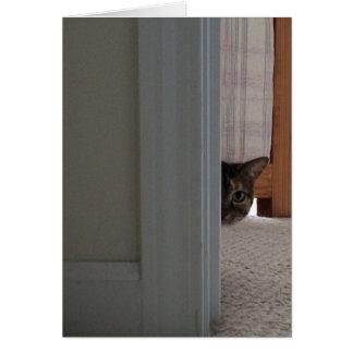Flüchtiger Blick ein Boo! Katzenkarte Karte