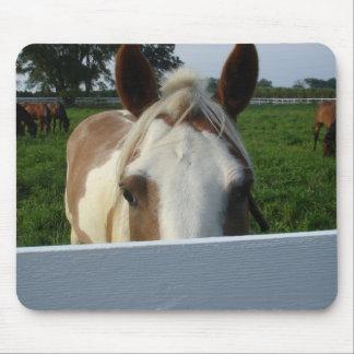 Flüchtiger Blick ein Boo-Pferd Mousepad