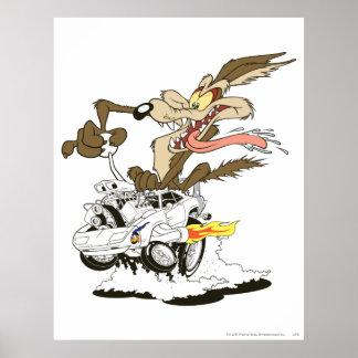 Flüchtiger Blick Wile E Coyote Crazy Plakat
