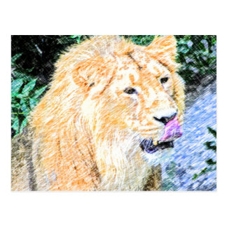 flüchtiger Löwekönig Postkarte