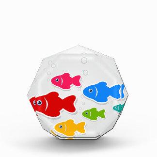 Flug von fishes3 auszeichnung