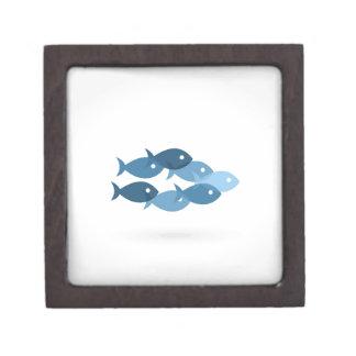 Flug von fishes5 kiste