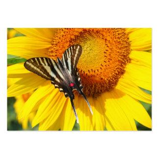 Flügel des Sommers, Visitenkarte