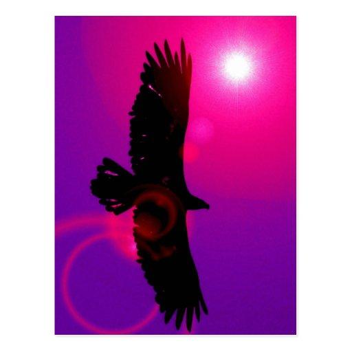 Flügel von Eagle Postkarten