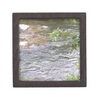 Fluss-Enten Schachtel