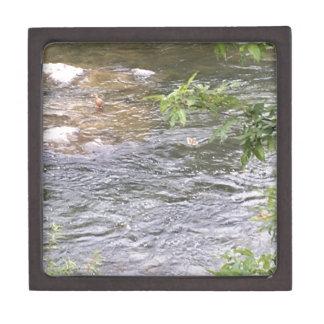 Fluss-Enten Schmuckkiste