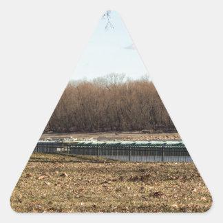 Fluss-Leben Dreieckiger Aufkleber