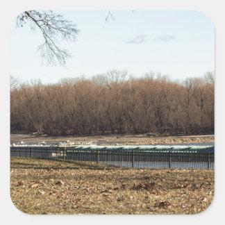 Fluss-Leben Quadratischer Aufkleber