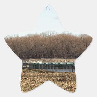 Fluss-Leben Stern-Aufkleber