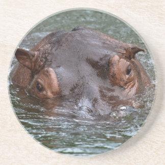 Flusspferd 8879 untersetzer