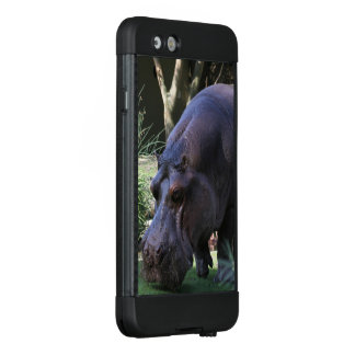 Flusspferd AJ17 LifeProof NÜÜD iPhone 6 Hülle