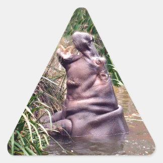 Flusspferd-Brüllen, Dreieckiger Aufkleber