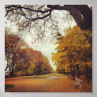 Flussufer-Park-New- Yorkfall-Kunst des Poster