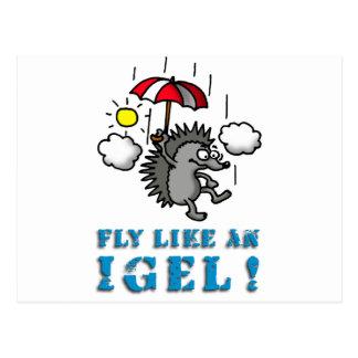 fly like an igel postkarte