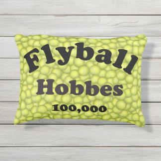Flyball Hobbes, 100.000 Punkte Kissen Für Draußen