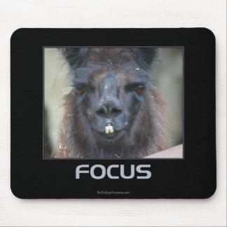 Fokus-schwarzes Lama inspirierend Mousepads