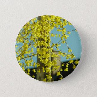 Forsythia-gelbe Blume Runder Button 5,1 Cm