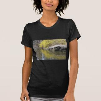 Forsythia und Reflexion T-Shirt