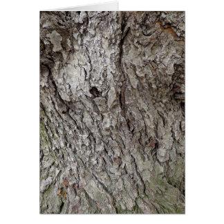 Foto der Baum-Barke Karte