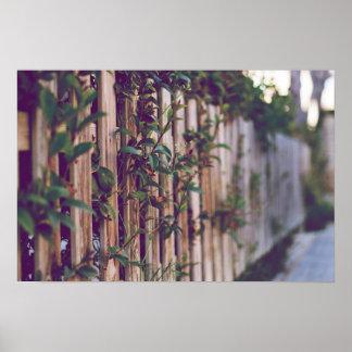Foto detailliert Zaun mit Blumen Poster