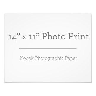 Foto-Druck der Gewohnheits-14 x 11 Fotografischer Druck