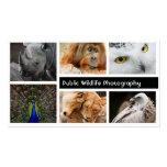 Foto-Rahmen-Fotografie-Fotograf-Geschäfts-Karte Visitenkartenvorlage