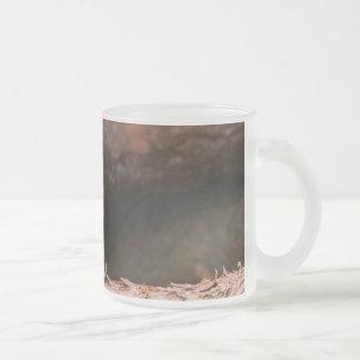 Fotografie eines Rotkehlchens, das auf Klotz sitzt Mattglastasse