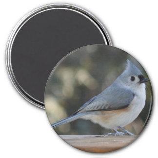 Fotomagnet des büscheligen Titmouse Runder Magnet 7,6 Cm