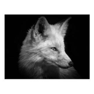 Fox-Porträt-Postkarte Postkarte