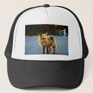 Fox-Sonnenuntergang-Zaun Truckerkappe