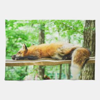 fox Teetuch, foxy Küchentuch, Fuchs-Wohngestaltung Geschirrtuch